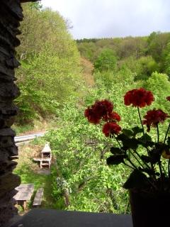 Vista desde la ventana a la barbacoa
